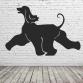 Afghan Hound Wall Art