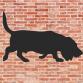 Basset Hound Wall Art
