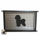 Bichon Frise Puppy Guard