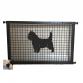 Cairn Terrier Puppy Guard