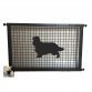 Cavalier King Charles Spaniel Puppy Guard