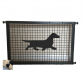 Dachshund Smooth Haired Puppy Guard