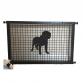 Dogue De Bordeaux Puppy Guard