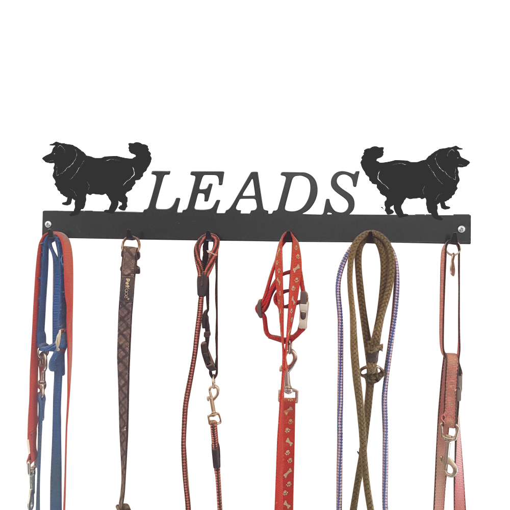 Holder /'Border Collie Sheepdog/' Wall Mounted Key Hooks WH00025107