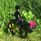Fairy Sitting On Toadstool