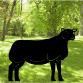 Sheep Breed Garden Art