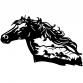 Horse Head With Horses Wall Art