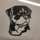 Rottweiler Head Wall Art